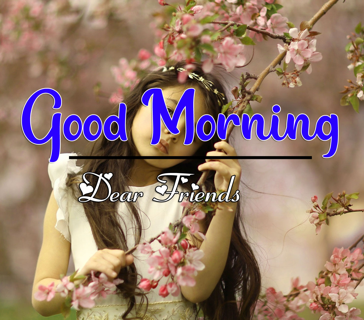 Nice Good Morning Images Pictures