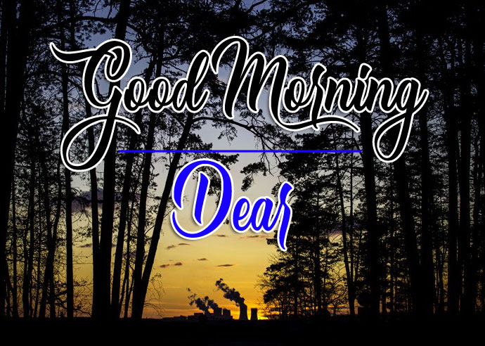 Top Good Morning Photo Images