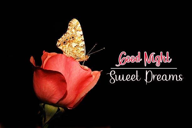 Beautiful Good Night Images photo free hd download