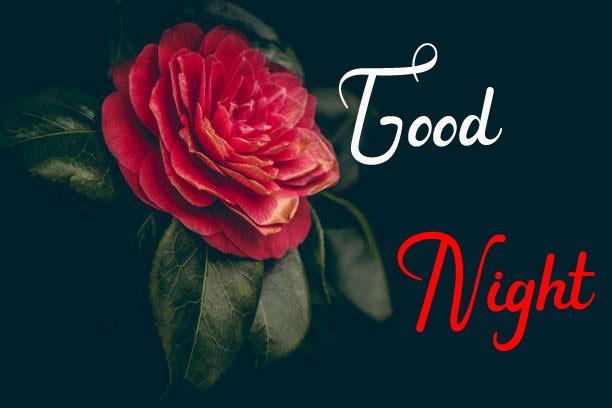 Beautiful Good Night Images photo pics hd