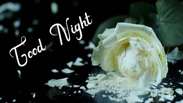 Beautiful Good Night Images pics for download