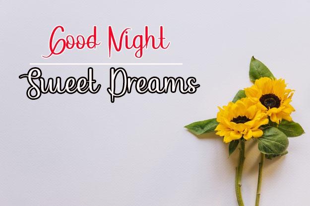 Beautiful Good Night Images pics free hd