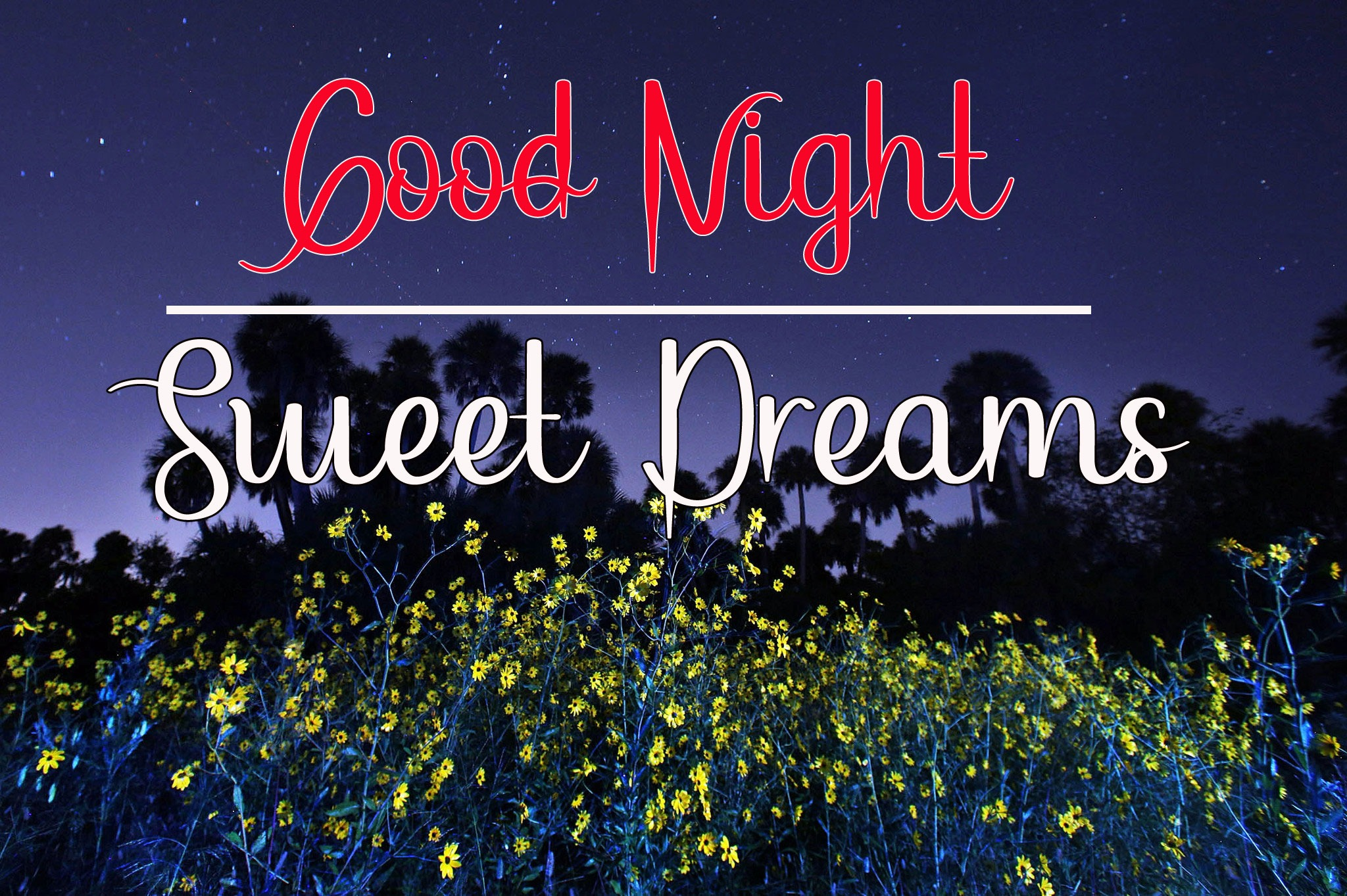 Beautiful Good Night Images pictures for free hd