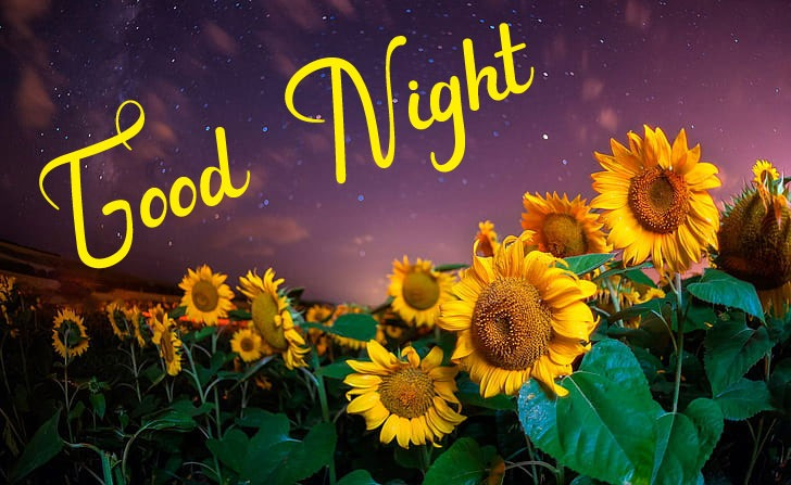 Beautiful Good Night Images wallpaper free download