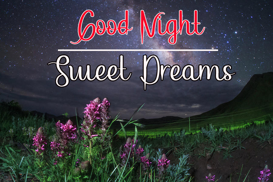 Beautiful New Good Night Images pics pictures hd