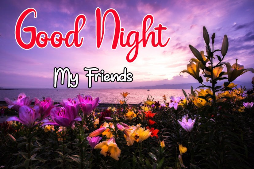 Beautiful New Good Night Images pictures free hd