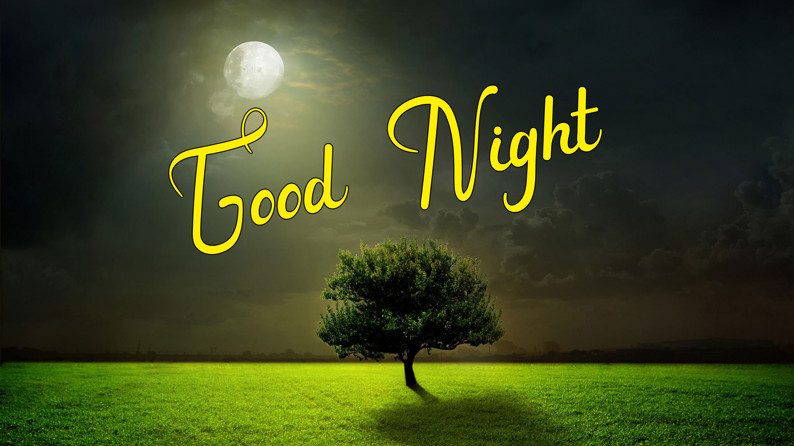 Beautiful New Good Night Images wallpaper for free download