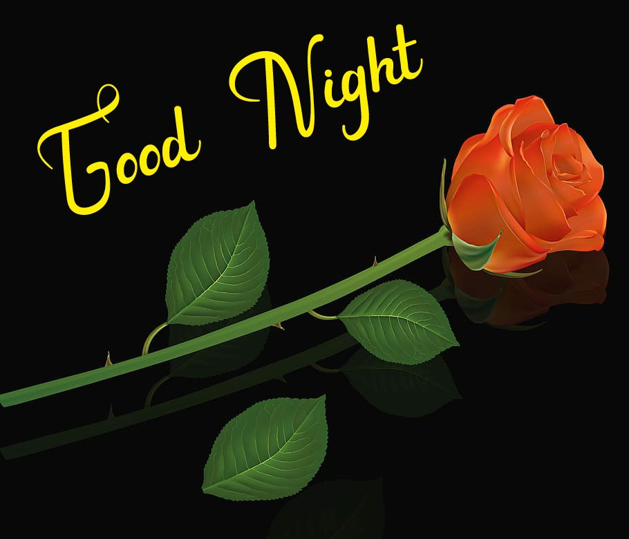 Best Good Night Images photo for free hd download