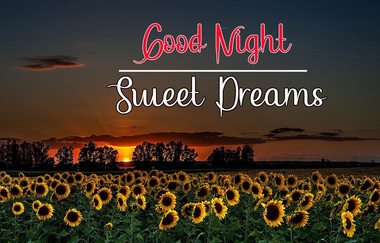 Best Good Night Images photo pics hd