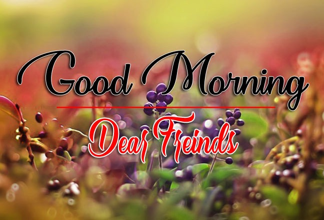 Free HD Latest Good Morning Pics Pictures