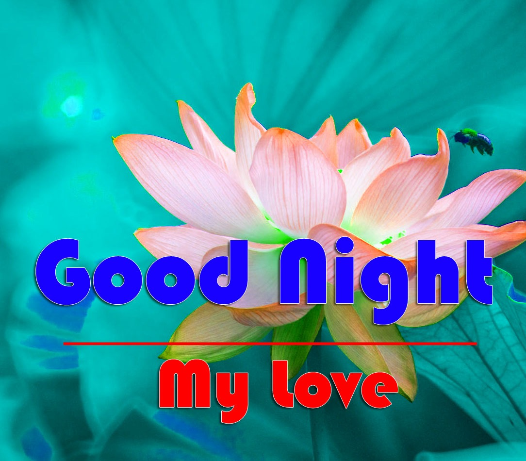 HD Good Night Piccs