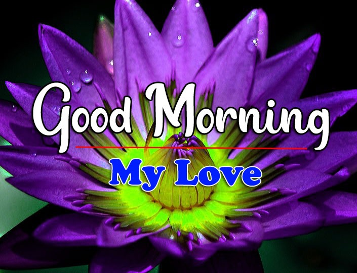HD Latest Good Morning Images for Whatsapp