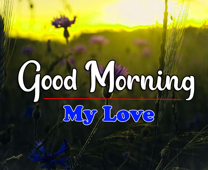 HD Latest Good Morning Photo for Facebook