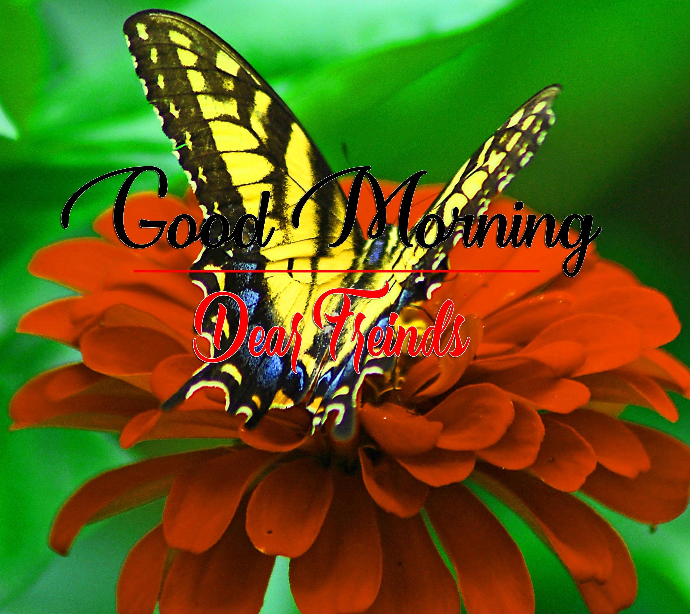 HD Latest Good Morning Photo