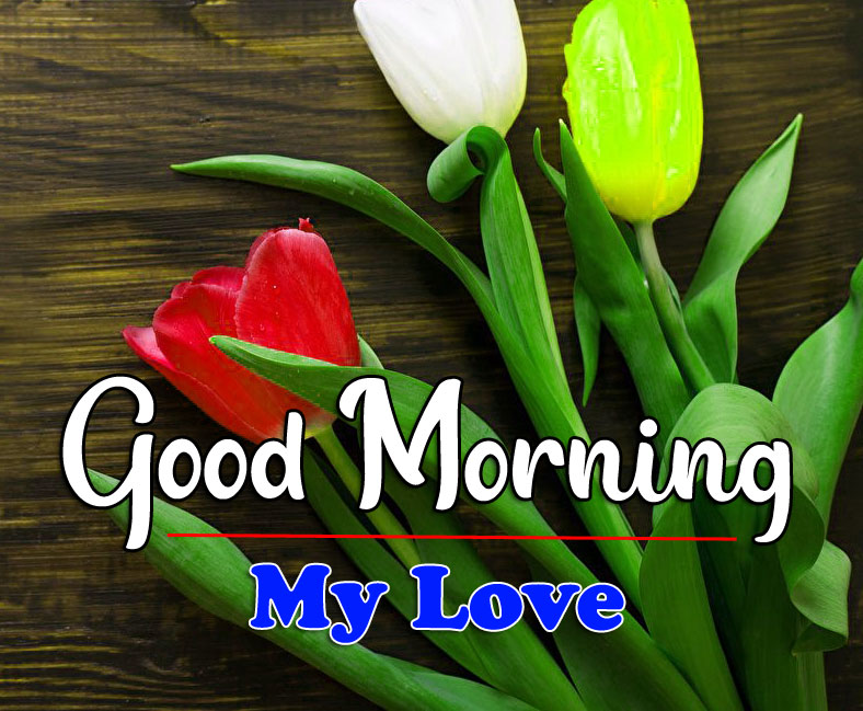 HD Latest Good Morning Pics Images Free