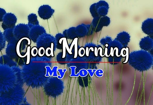 HD Latest Good Morning Pics New Download