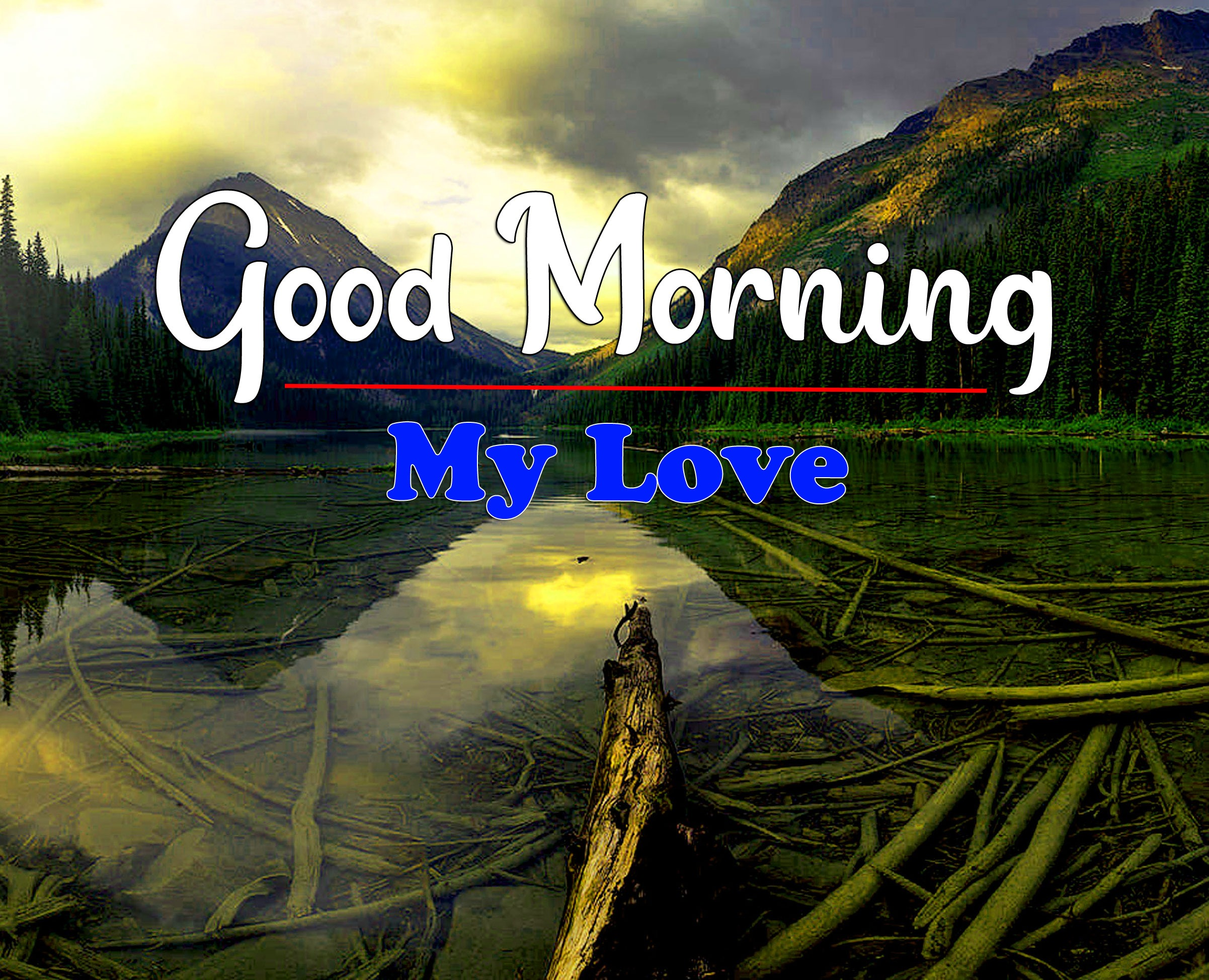 HD Latest Good Morning Pics Pictures Download