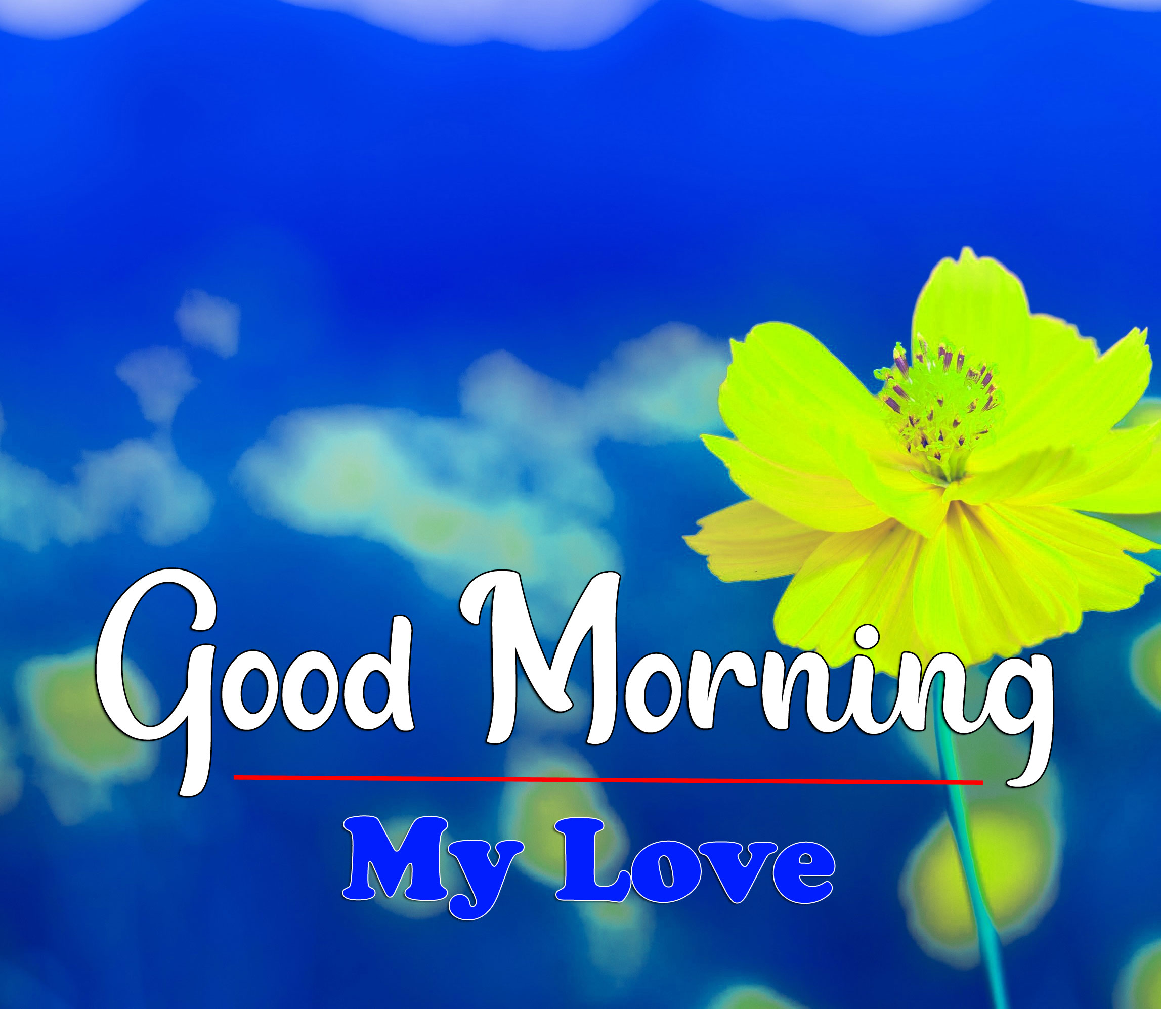 New Free HD Latest Good Morning Images Pics Download