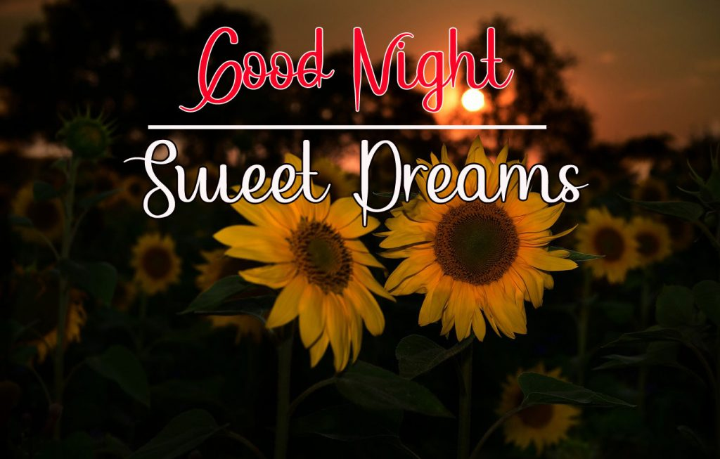 Best Good Night Images photo pictures hd