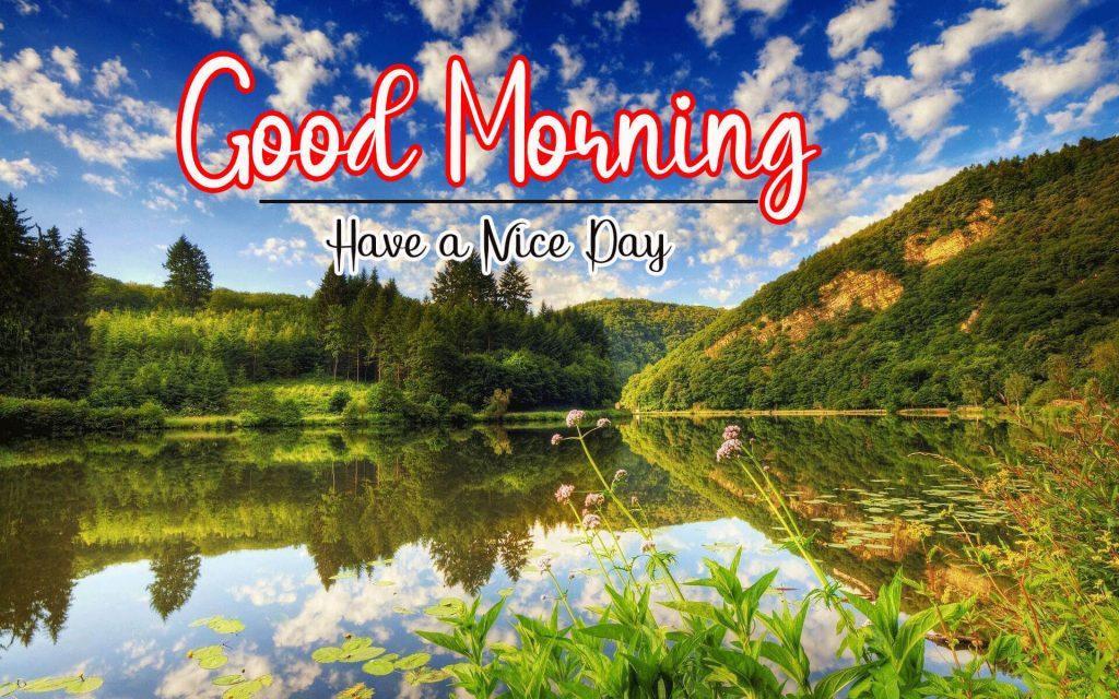Free Nature Good Morning Wallpaper