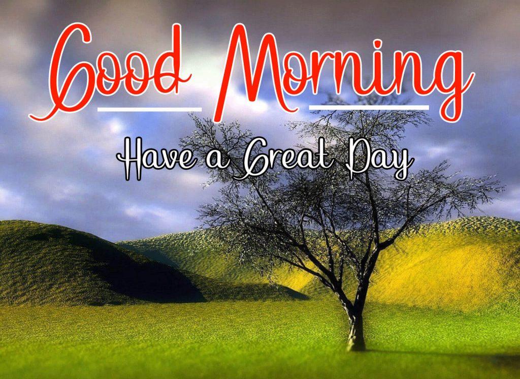 Nature Good Morning