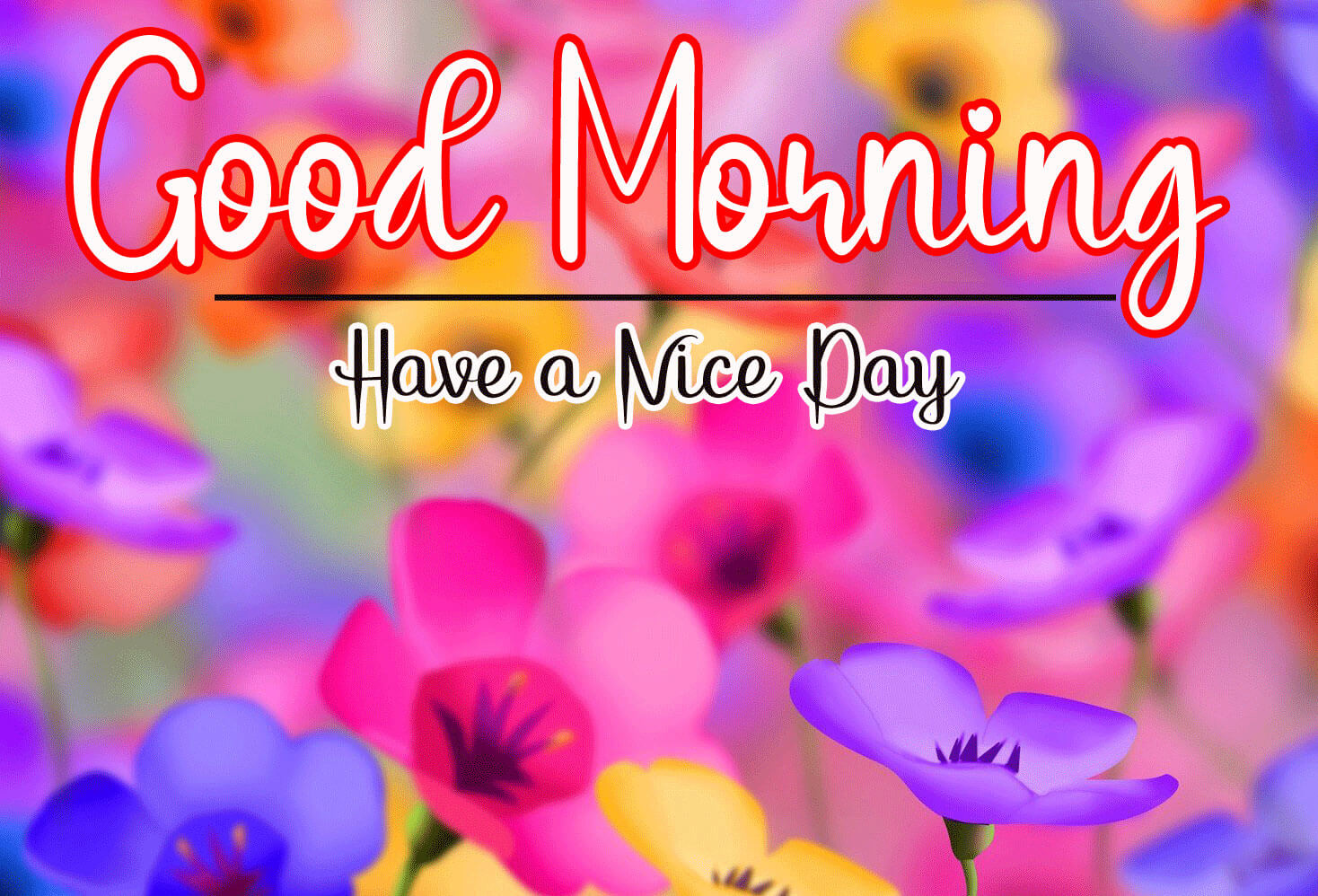 Best Good Morning Images Wallpaper HD for Whatsapp