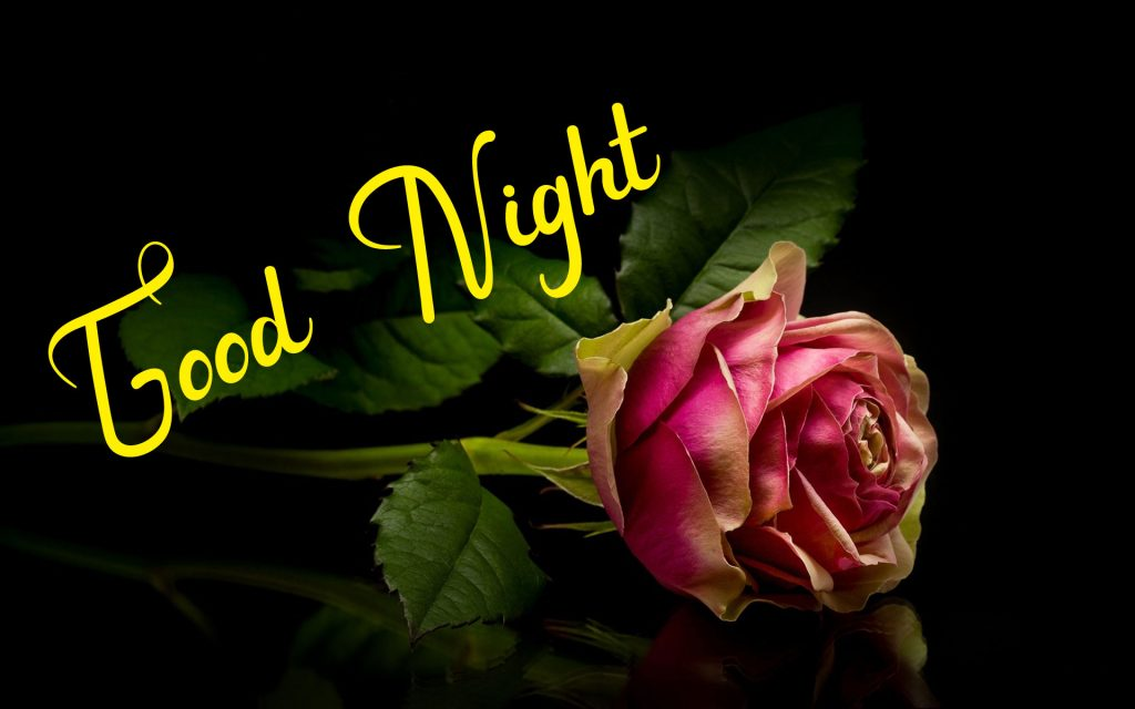 New Best Good Night Images wallpaper free hd