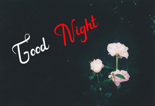 New Best Good Night Images wallpaper pictures hd
