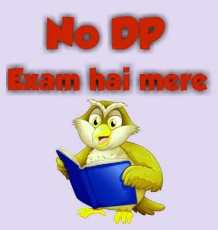 Best No Dp Images